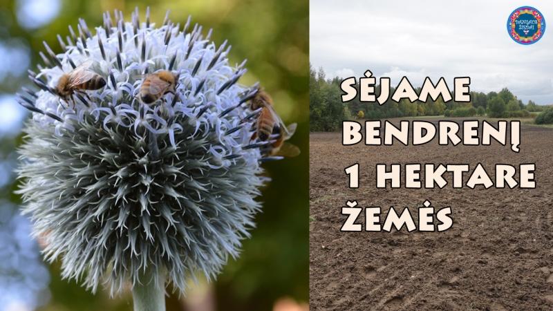 bendrenis2