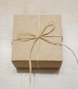 Ruda dėžutė
