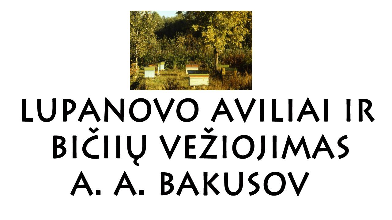 Lupanovo aviliai ir bičių vežiojimas, A. A. Bakusov